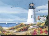 Lighthouse Harbor I
