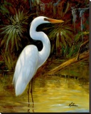 Tropical Egret I