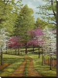 Dogwood Lane