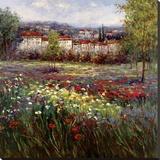 Tuscan Pleasures II