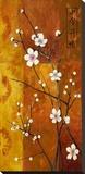 Cerezos en Flor VI