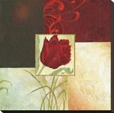 Tulip Square IV
