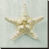 Ocean Jewel III