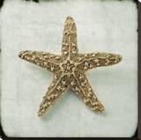 Ocean Jewel VII
