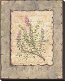 Vintage Herbs  Thyme