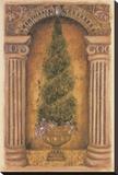 Cypress Niche