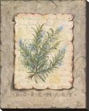 Vintage Herbs  Rosemary