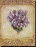 Tulip Violeta