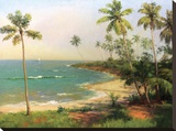 Tropical Coastline