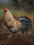 White And Green Rooster