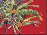 Fire Palm