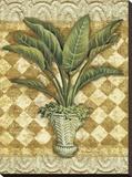 Elegant Palms II
