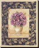 Begonia Rose
