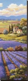 Fields of Lavender I