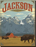 Jackson Wyoming