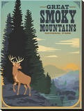 Great Smoky Mountains Deer