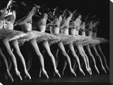Royal Ballet Dancers in La Bayadere