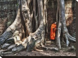 Monk reading in Ta Prohm temple  Angkor Wat