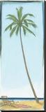 Seaside Coconut Tree