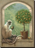 Monkey & Pear Tree