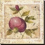 A Pomegranate Page