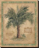 Palm Carpoxylon