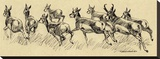 Running Deer (sepia)