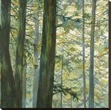 Trees in Fog II
