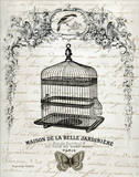 French Birdcage II