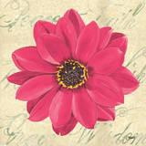 Floral Dream IV