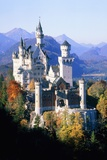 Neuschwanstein Castle in autumn  Bavaria  Germany