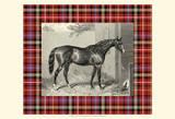 Equestrian Plaid III