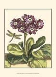 Garden Vignette IV