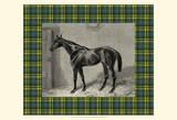 Equestrian Plaid II