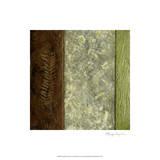 Earthen Textures I
