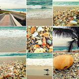 Shell Beach (9 Patch)