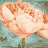 Beautiful Peonies Square II