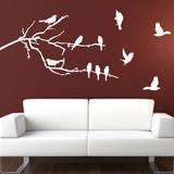 Branches & Birds