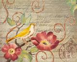 Avian Postcard II