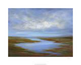 Pescadero Wetlands