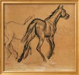 Horses  circa 1882