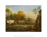Cattle in a Meadow  1652