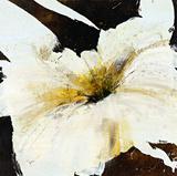 Blanco Flor IV