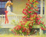 Crimson Rambler