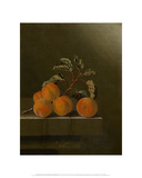 Still Life with Five Apricots  1704