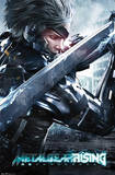 Metal Gear Rising - Blade