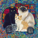 Carpet Cats 1