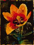 Botany Fleur II