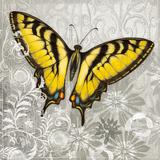 Yellow Butterfly III