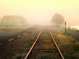 Fog on the Tracks